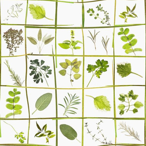 """12"""" Midsummer Dried And Pressed Green Herbs Meadow Set Box, Dried Flowers  Fabric, Pressed Herbs And Flowers Fabric"""