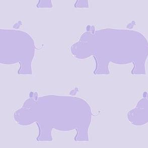 sleepy hippo and bird