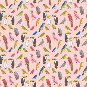 SMALL  parrot // tropical rainforest bird fabric parrots blush