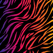90s Wild Stripes Rainbow Black