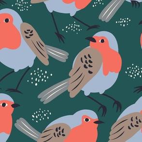 Little birds robins