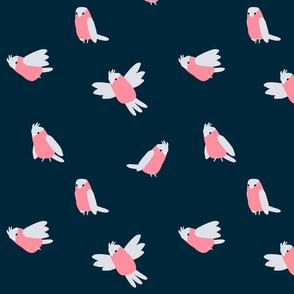 Cute galahs navy