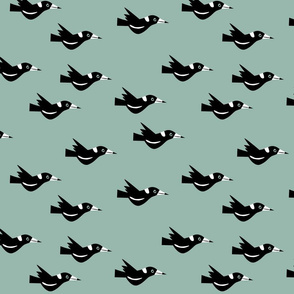 Flying magpies green