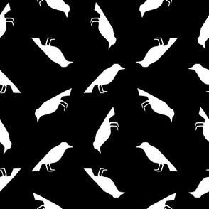 Vintage Birds Pattern with Black Background