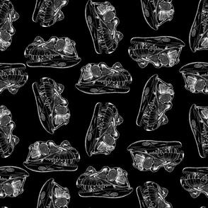 Dinosaur Skulls Pattern on Black