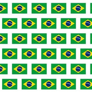 Brazilian Flag // Extra Small
