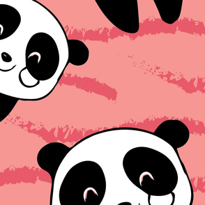 cute panda wandering in lines