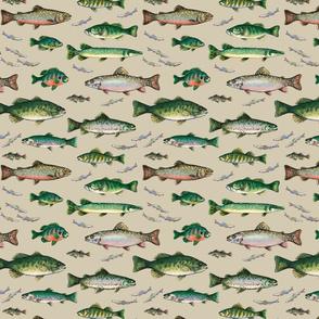 Go Fish on khaki background