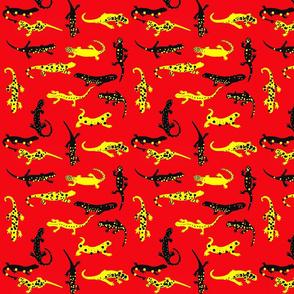 Fire salamanders