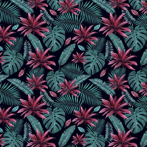 Tropical Red and Teal