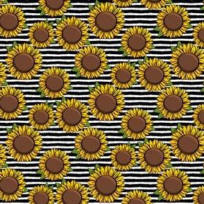 "(1"" scale) Sunflowers - black stripes C20BS"
