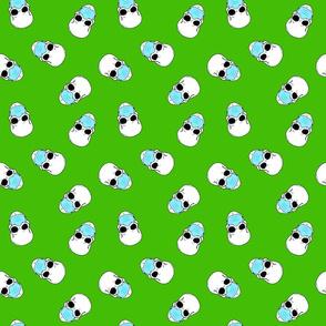 skulls in medical masks on green small