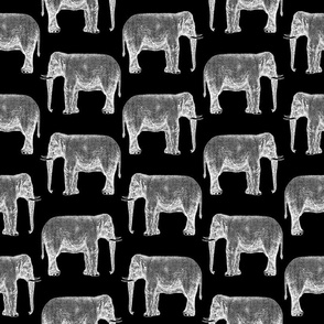 Classic Elephant Print Pattern with Black Background
