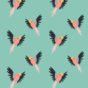 Pretty Pink Tropical Birds