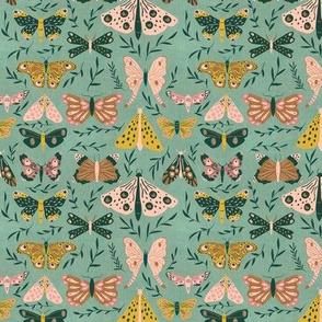 Fine Moths - Small Scale