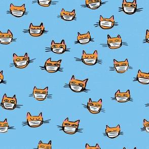 orange cats with masks