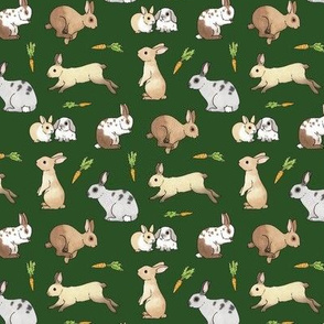 Rabbits on forest green