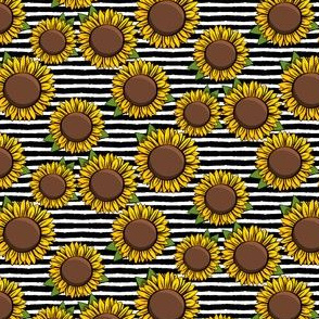 (small scale) Sunflowers - black stripes C20BS
