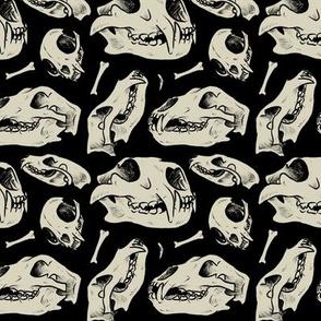 Carnivore skulls - Black