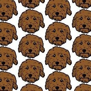 red poodles - brown doodles