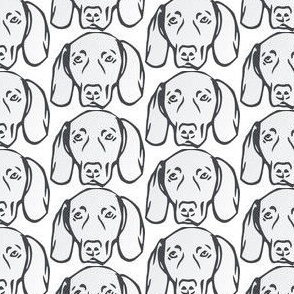 Cute Weimaraner faces - Weimaraner fabric