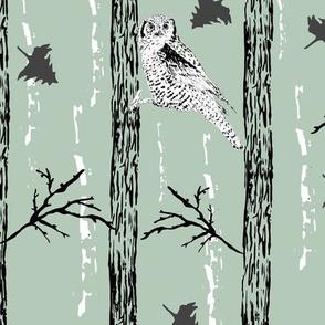 Woodland Owl Green