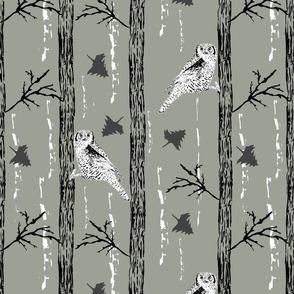 Woodland Owl Grey