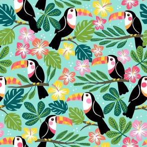 summer toucan 1