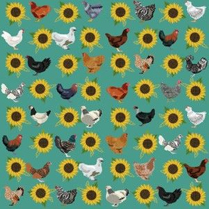SMALL chickens florals fabric - sunflower floral fabric, farm fabric, chicken lady fabric, chickens fabric - teal