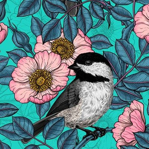 Chickadees in the wild rose, pink and blue