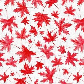 Oh Canada very small, meaple leaf, maple leaves