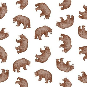 Antique Bears in Walnut Brown with White Background