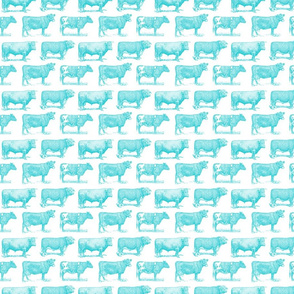 Classic Cow Illustrations in Ocean Blue with White Background (Small Scale)