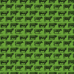 Classic Cow Illustrations in Black with Apple Green Background (Small Scale)