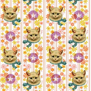 Retro Kitty with Stars* (Valencia) || cat kitten vintage flowers floral stripes 60s 70s kitsch ephemera pastel