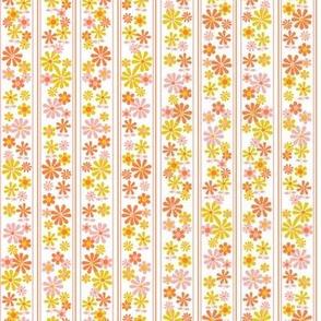 Brady Girl* (Valencia) || flowers floral stripes daisy 70s 60s vintage retro orange gold coral