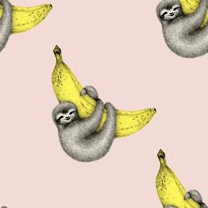 Bananas About You - sloth illustration on pink - medium