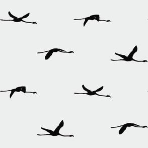 Flamingos flying | Black - Off White | Pattern | Silhouette | Chalk White Benjamin Moore 2126-70
