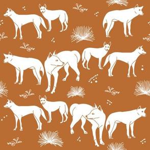 Desert Dingoes in Burnt Orange (Solid)