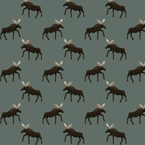 Moose Single teal