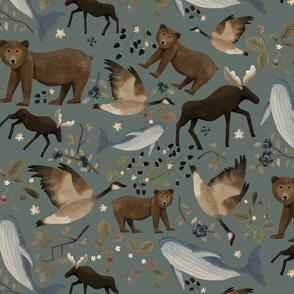 Canadian Wildlife dirty teal