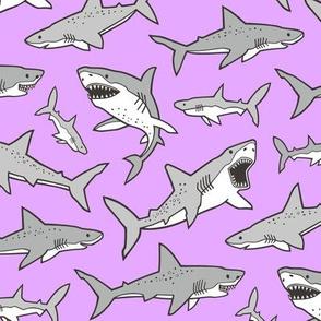 Sharks Shark Grey on Bright Lavender