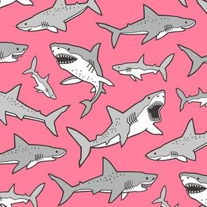 Sharks Shark Grey on Warm Pink
