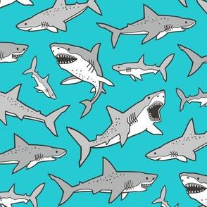 Sharks Shark Grey on Dark Aqua Blue