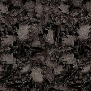 autumn leaves on floor - 20