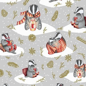 hygge badgers silver smaller