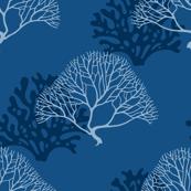 Gorgonia in classic blue