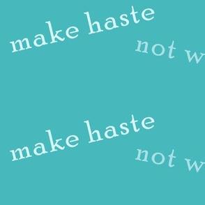 make_haste_not_waste_aqua