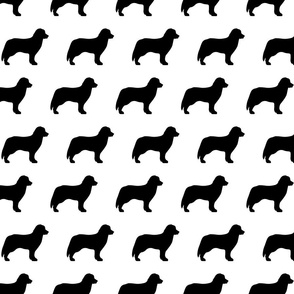 Bernese Dog Silhouette Black White