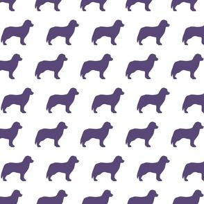Bernese Dog Silhouette Purple Dogs